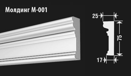 front-molding-m-001