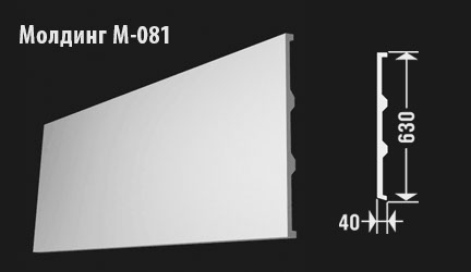 front-molding-м-081